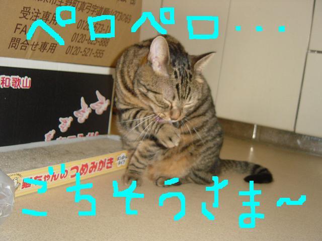 1124709380892007.jpg