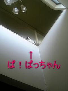 1167198197751174.jpg