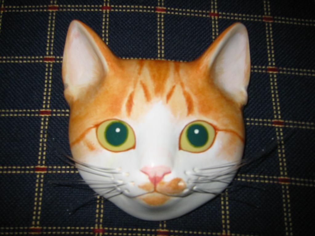 猫面.jpg