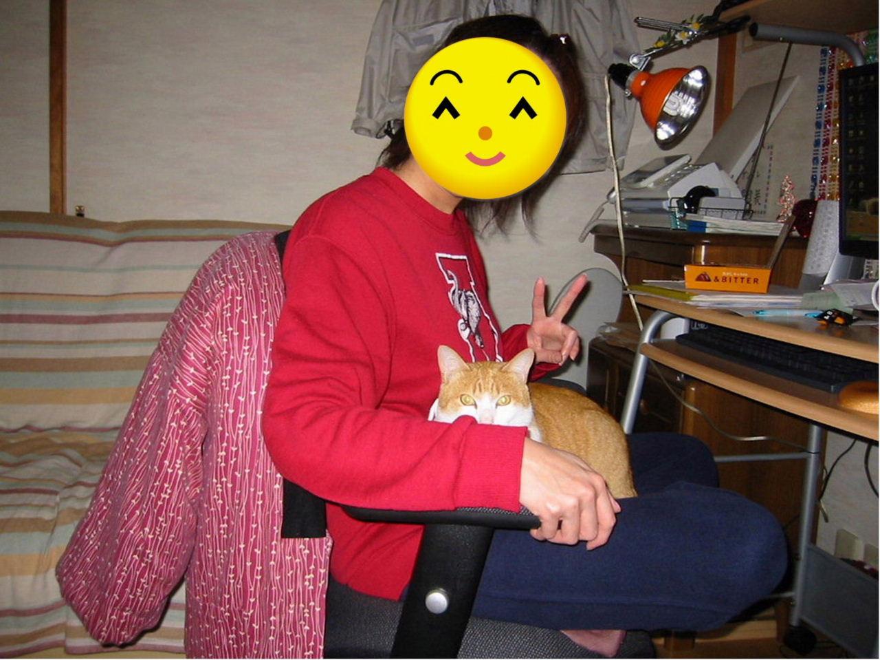 パソコン椅子でのんの遠景.jpg