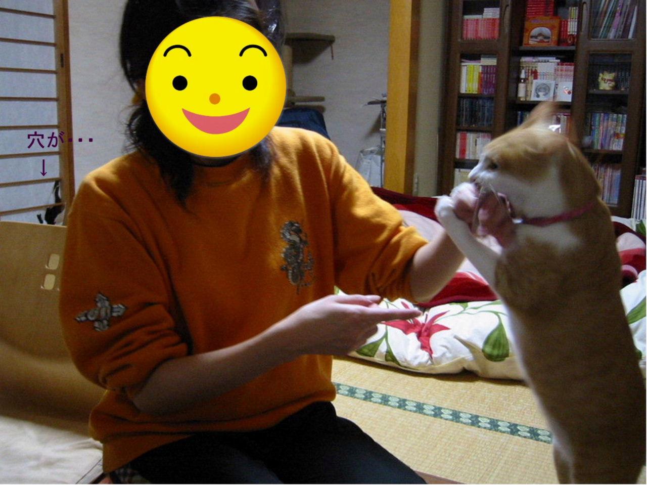 飼い猫に食われる.jpg
