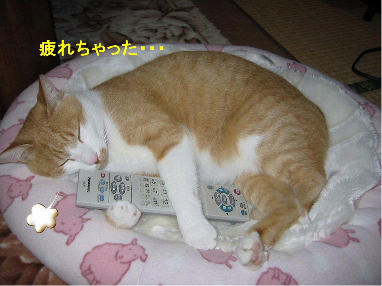 疲れた〜.jpg