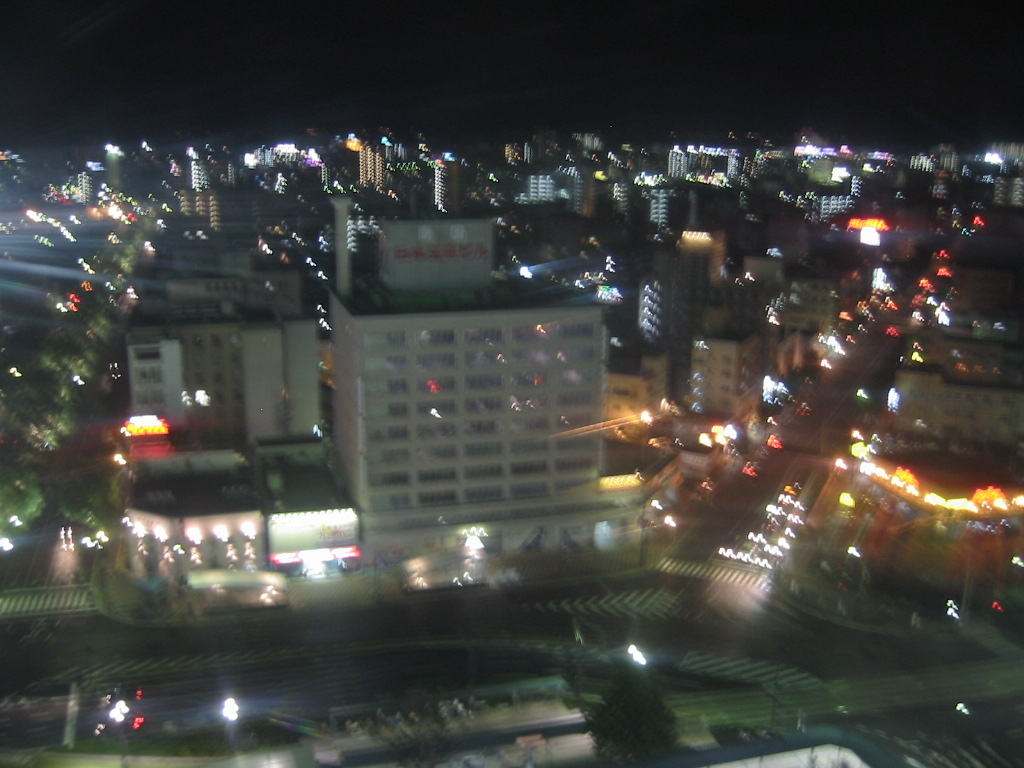 観覧車からの景色.jpg