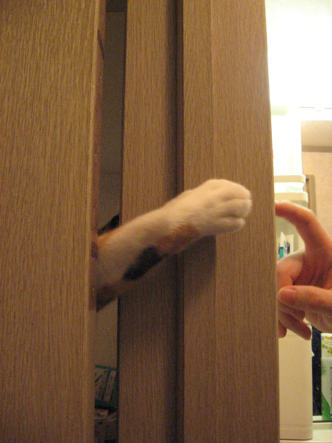 ドアの隙間3.jpg