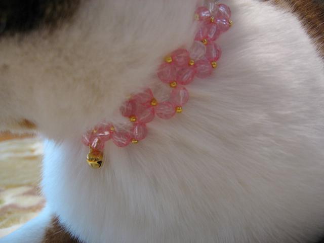 ネコの首も借りたい2.jpg