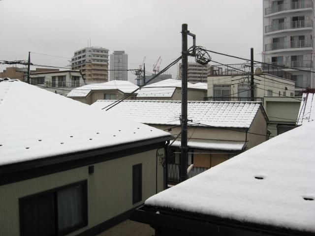冬の終わり.jpg