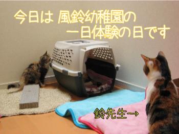 風鈴幼稚園.jpg
