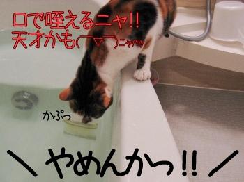 入浴剤.jpg