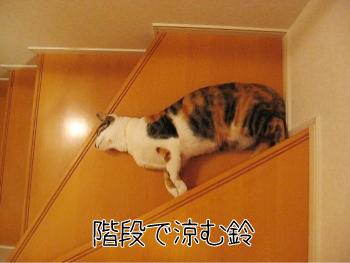 ゆる〜い.jpg