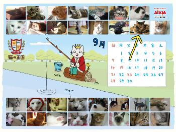 猫カレンダー.jpg