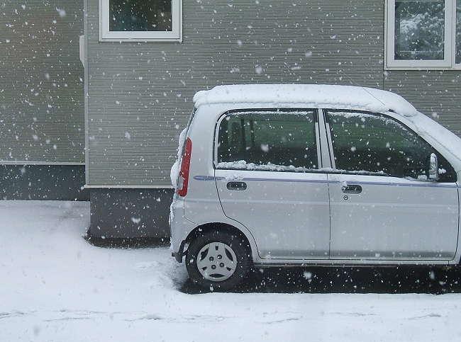 Snow0412-2.jpg
