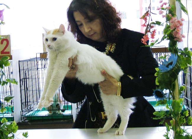 Tokiwa0414.jpg