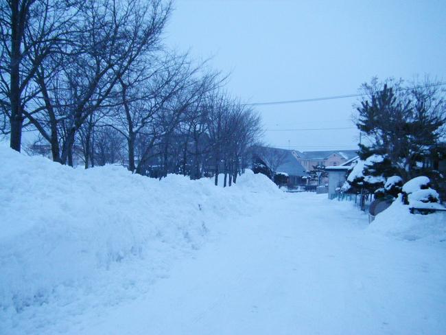 Snow0224-1.jpg