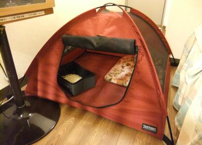Tent1119-1.jpg