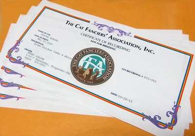 Certificates1114.jpg