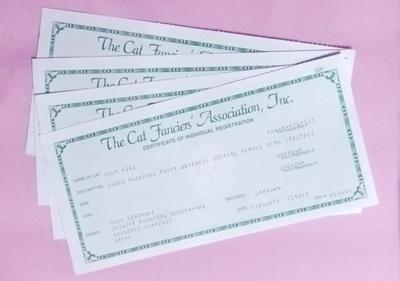 Certificates0511.jpg