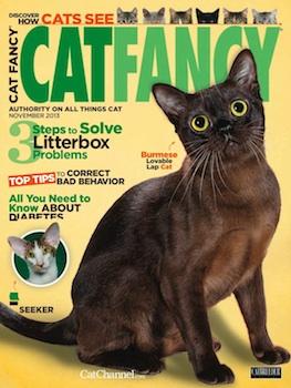 CatFancy2013NovCover.jpg