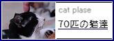 1164693572069782.jpg