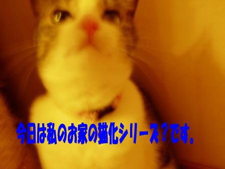 1180268388989848.jpg