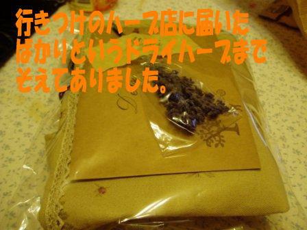 1193832320209872.jpg