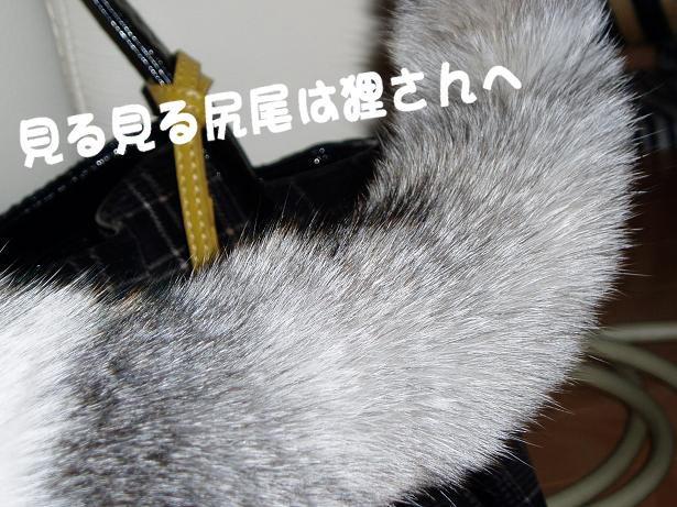 1305101117430289.jpg