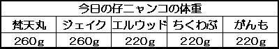 1129211219746218.jpg