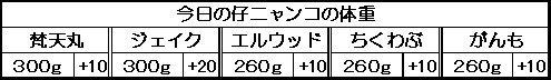 1129461085567493.jpg