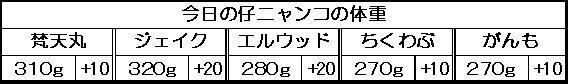 1129557502416923.jpg