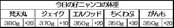 1129985886951670.jpg