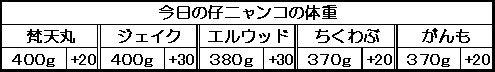 1130162028037161.jpg