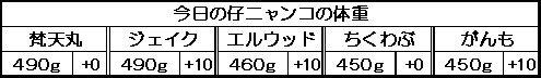 1130841811109443.jpg