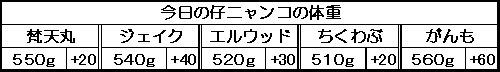 1131284509816761.jpg