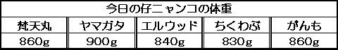 1132755991504227.jpg