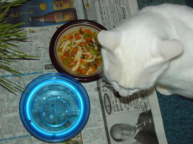 20051004.neru.food.01.jpg