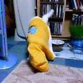 20051211.neru.洋服.001.jpg