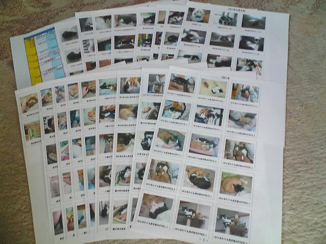 20070526.お土産.001.jpg
