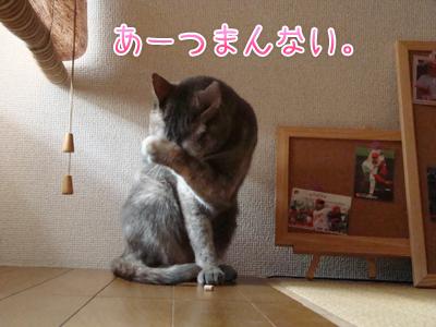 tsumannai2.jpg