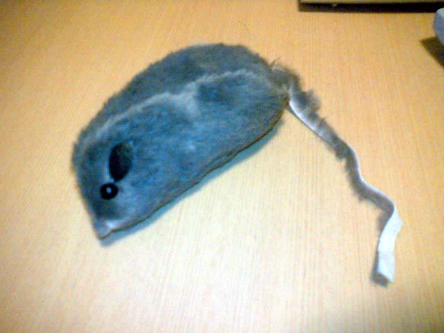 お土産@鼠のおもちゃ.jpg