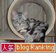 人気blogRankingバナー2