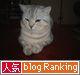 人気blogRankingバナー1